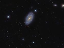 M109 or NGC3992