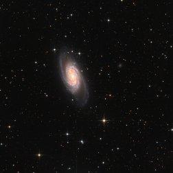 NGC2903_LRGB_small