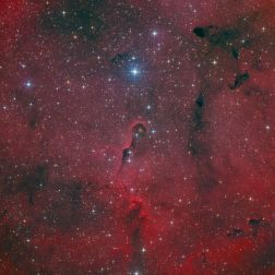 IC1396_HaO3LRGBv2